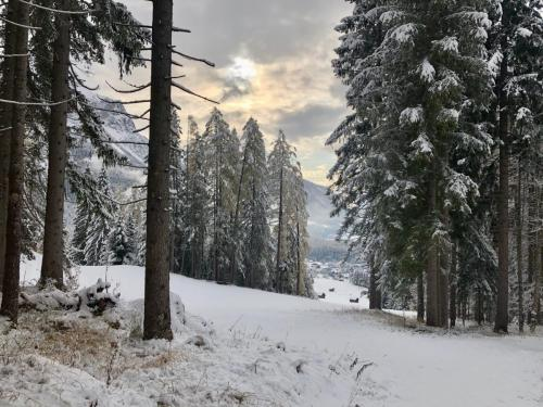 Der Winter